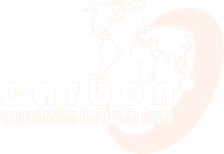 Carbon Sequestration Leadership Forum (CSLF)